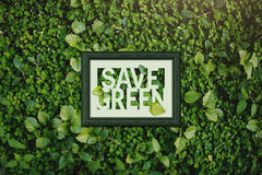 Ecology concept, Save green word inside wooden photo frame, surr Royalty Free Stock Images