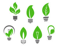 Light bulbs with green leaves Royalty Free Stock Image