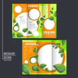 Ecology concept tri-fold template brochure with leaf element Stock Photo