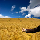 Ecology conception. Businessman holding thumb up Royalty Free Stock Photo