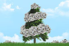 Ecology with Dollar Banknotes Royalty Free Stock Photo
