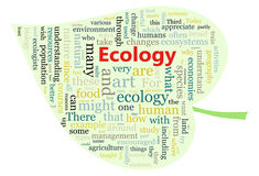 Ecology Royalty Free Stock Photography