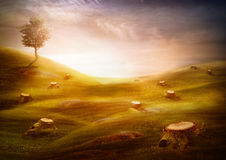 Ecology & environment design - Forest destruction. Ecology & environment design - Forest destruction. Environment concept with cut trees in the meadow with Stock Photo