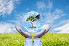 Ecology and Environment Earth. Planet and tree with butterfly in human hands over green and sky nature