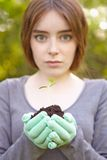 Ecology and environmental conservation. Planting. Stock Photography