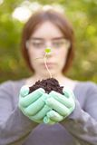 Ecology and environmental conservation. Planting. Royalty Free Stock Image