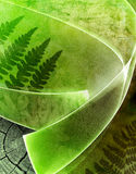 Ecology green background Royalty Free Stock Photos
