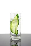 Ecology -green leaf in glass of water. Stock Image