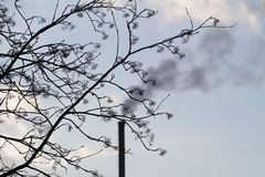 A fuming pipe. Ecology harm. A fuming pipe through withered branches royalty free stock photo