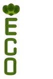 Ecology icon set. Stock Photography