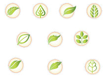 Ecology icons. Set of plants and leafs ecology icons Stock Image