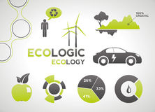 Ecology infographic elements and icons Stock Photography