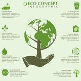Ecology infographics Stock Image