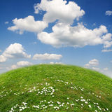 Ecology landscape Royalty Free Stock Photo