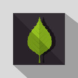 Ecology leaves, leaf Royalty Free Stock Photography