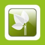 Ecology leaves, leaf Stock Image