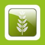 Ecology leaves, leaf Stock Photo