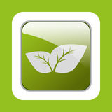 Ecology leaves, leaf Stock Photography