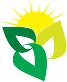 Ecology logo wit green leafs. Sun in the background Royalty Free Stock Images