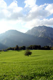 Ecology mountain farm Royalty Free Stock Images