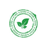 Ecology natural stamp Stock Image