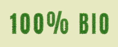 Ecology nature design. 100% BIO. Ecology nature design. The text 100% BIO is made of grass. Environmental concept for ads, banners . Vector illustration royalty free illustration