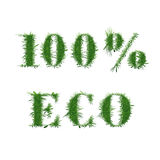 Ecology nature design. 100 ECO. Ecology nature design. The text. 100 ECO is made of grass. Environmental concepts for healthy lifestyle, natural foods. Suitable vector illustration