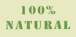 Ecology nature design. 100 % Natural. Ecology nature design. The text 100% Natural is made of grass. Environmental concept for advertisement, banners, cards royalty free illustration