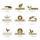 Ecology, organic icon set. Organic-icons. Agriculture, nature, organic farming, the farm will be used in areas such as design icons Royalty Free Stock Photos