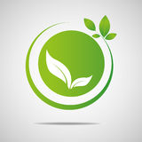 Ecology organic with leafs Vector illustration. Royalty Free Stock Photo