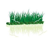 Ecology. The phrase green energy, a grass with dew and couple of birds Royalty Free Stock Photography