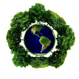 Ecology planet with with trees around. eco earth. Small eco planet with tree and roots on it. Green Earth concept. (Elements of this 3d rendered image furnished Stock Photo