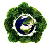 Ecology planet with with trees around. eco earth. Small eco planet with tree and roots on it. Green Earth concept. (Elements of this 3d rendered image furnished Royalty Free Stock Image