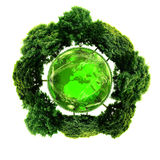 Ecology planet with with trees around. eco earth. Royalty Free Stock Photo