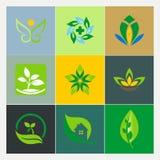 Ecology plant leaf logos Royalty Free Stock Photo