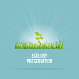 Ecology Preservation Royalty Free Stock Photos