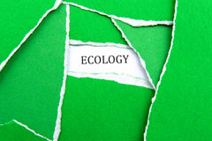 Ecology Rocks!. Concept photo showing the word ecology surrounded by torn green paper Stock Image
