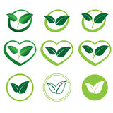 Ecology set of  icons of green leaves. Ecology set of  icons of green leaves Royalty Free Stock Images