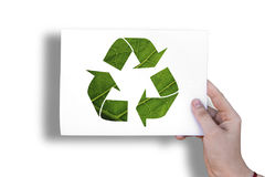 Ecology sign on white sheet Royalty Free Stock Photos