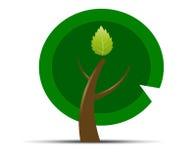 Ecology symbol Royalty Free Stock Photos