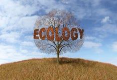 Ecology text on a tree Stock Photo