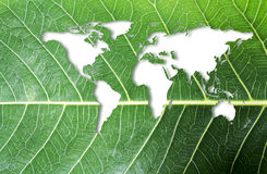 Ecology and think green concept of world map on fresh green leaf Stock Photos
