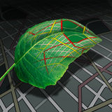 Ecology Transportation. And green energy transport and driving as a leaf with a generic road map texture as a clean natural fuel source metaphor in a 3D Stock Images