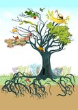 Ecology tree royalty free illustration
