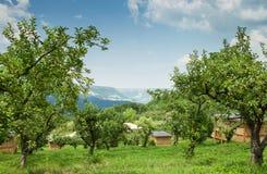 Ecology village in mountain area Stock Photos