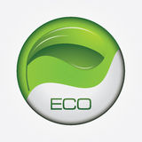 Ecology web button. With leaf Royalty Free Stock Photography