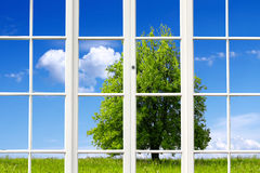 Ecology Window Stock Image