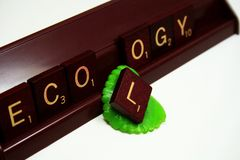 Ecology word on scrabble letters. With a leaf Royalty Free Stock Photography