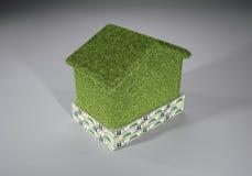 Economía ecológica Fotografía de archivo
