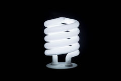 Economia de energia da lâmpada fotografia de stock royalty free